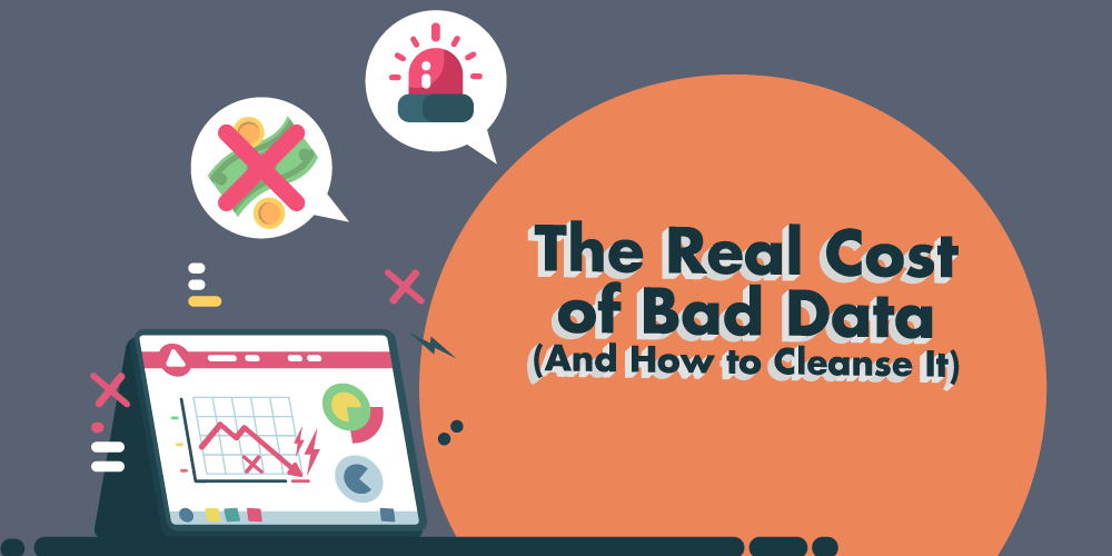 The Real Cost of Bad Data And How to Cleanse It Banner
