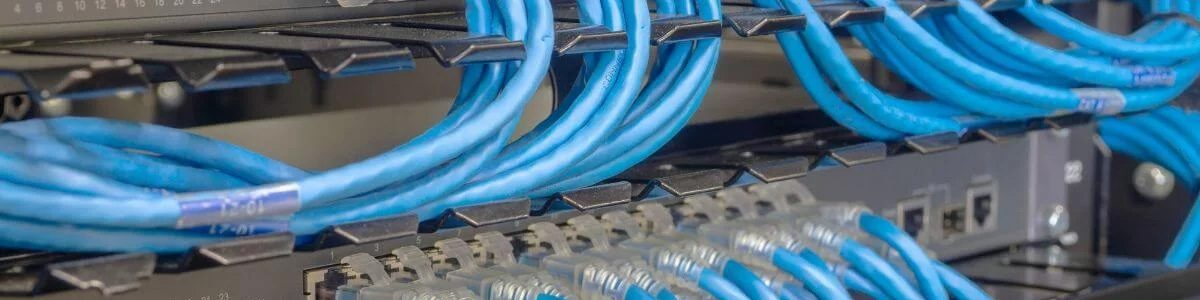 blue network cables